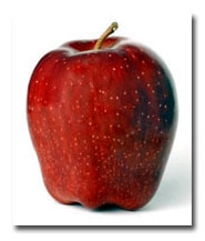 La Verne Nursery - Apple Red Delicious (Malus pumila) Thumbnail