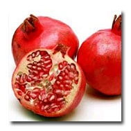 La Verne Nursery - Pomegranate Wonderful (Prunus granatum) Thumbnail